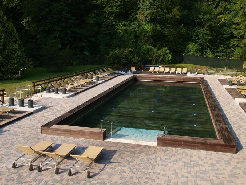 Хвойный бассейн в Шмарьешке Словения