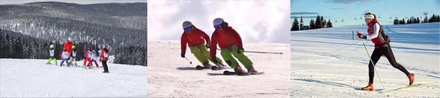 Горные лыжи в Рогла Словения