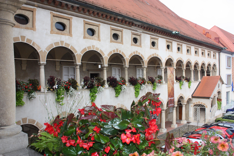 Музей Целе